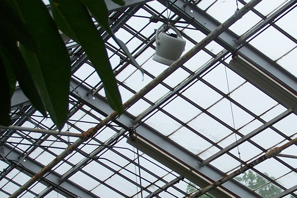 ZOO Fans for Garden Centers, Nurseries, and Greenhouses